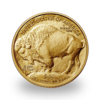 Buffalo or 1 once - Pack de 10 - 2021 - US Mint